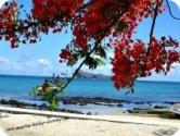 Cap Malheureux Beach in Mauritius