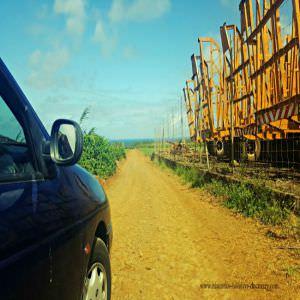 Andrea Lodges Bumpy Road Track