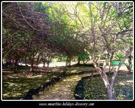 Garden At Mauritius Vortex