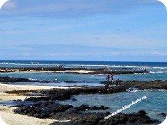 Mauritius beach, Palmar