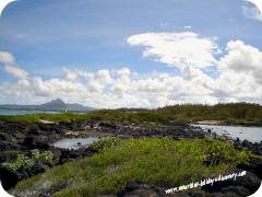Palmar Beach, Mauritius